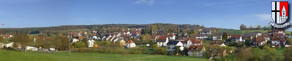 dietershan.de